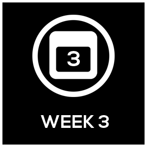 Icon_Template_Week3