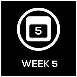Icon_Template_Week5